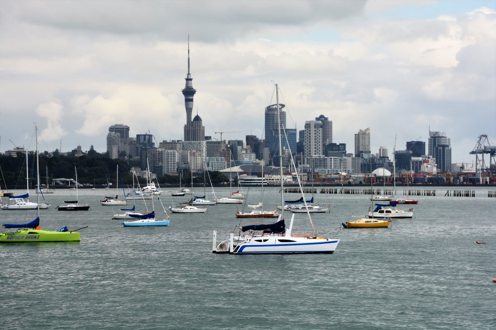 View of Auckland from Okahu Bay Wharf