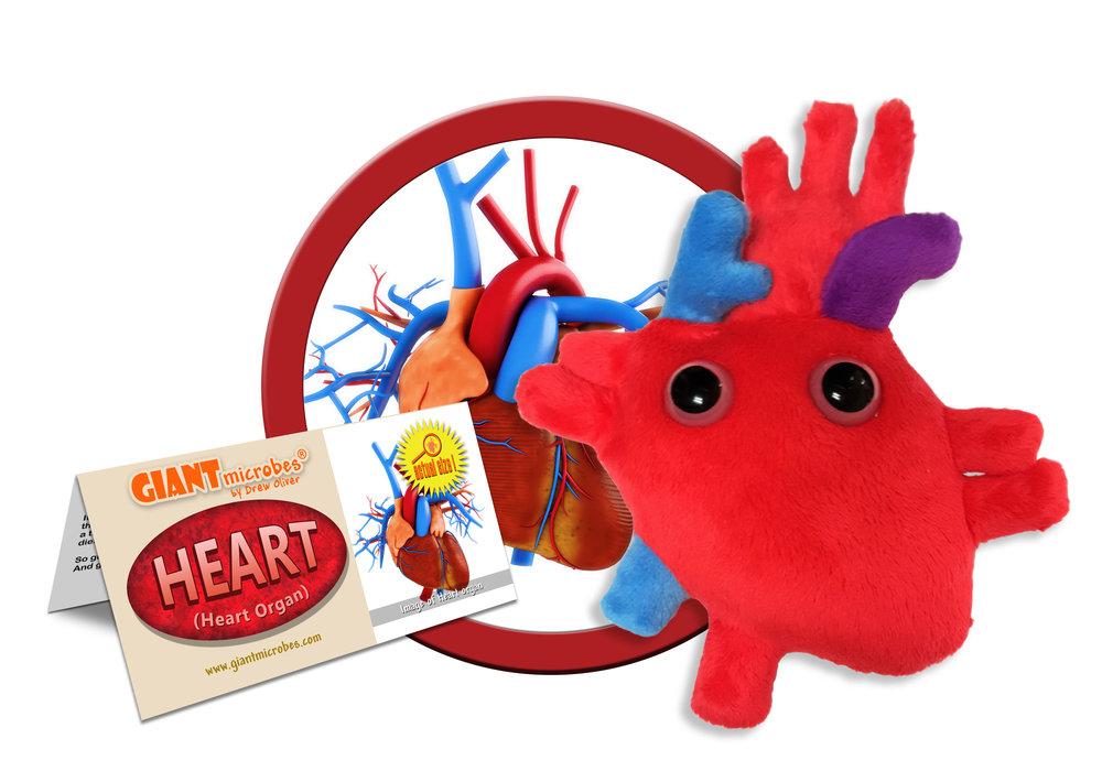GMUS-PD-0360_Heart_Cluster.jpg