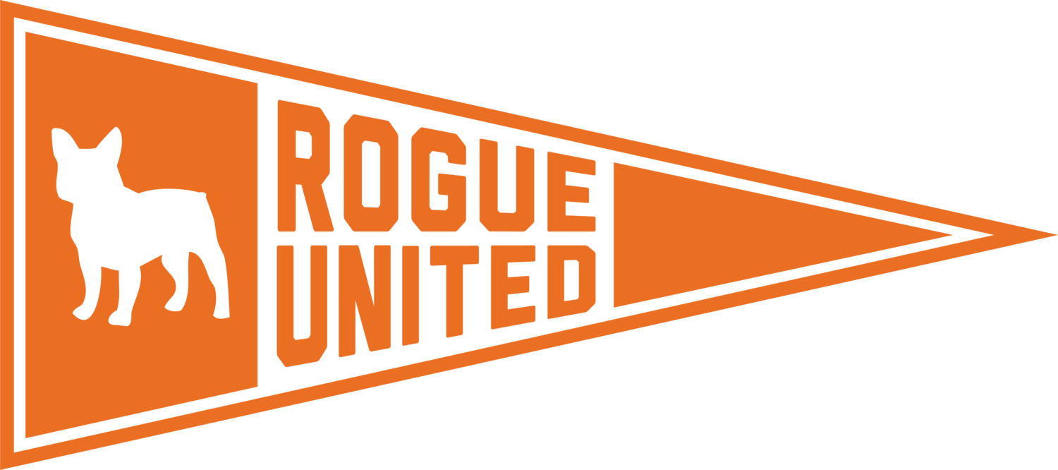 Rogue United Network