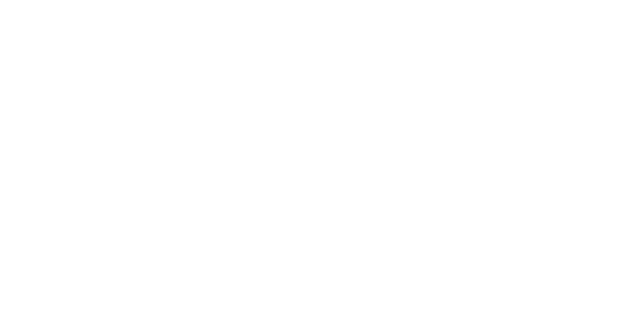 Joyner Media & Strategies Inc.