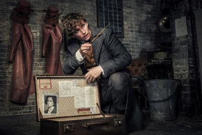 Newt Scamander in Fantastic Beasts: The Crimes of Grindelwald