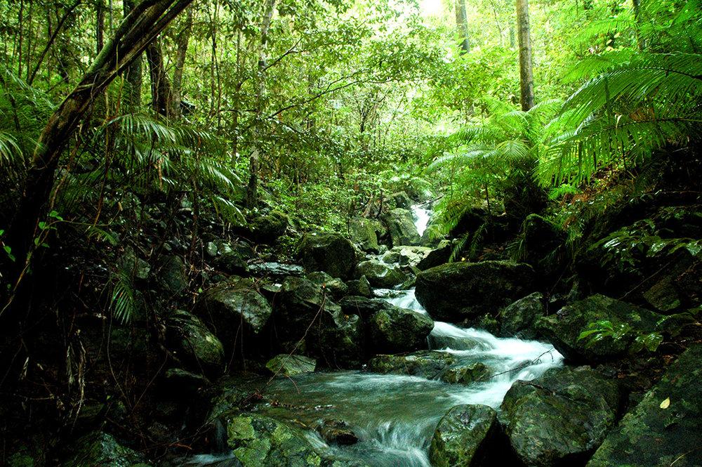 Camelot Close Creek photo.jpg