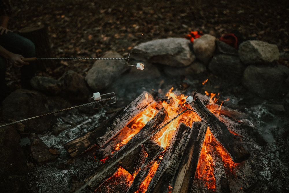 Campfire_ReaganLynnPhotography-13.jpg