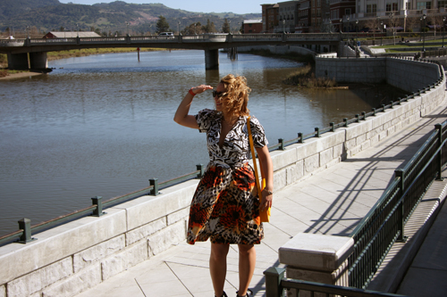 A-Stroll-Along-The-Napa-Riverfront
