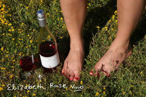 elizabeth-rose-wine-life-is-a-picnic