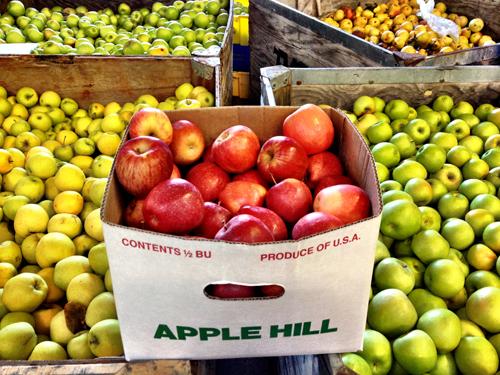 Take-Me-to-Apple-Hill-Dozens