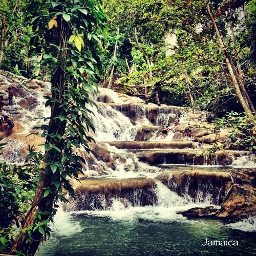ceja-vineyards-wine-club-cruise-dalia-ceja-jamaica