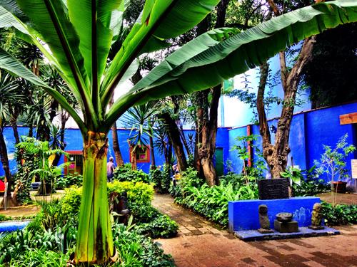 Luscious gardens inside La Casa Azul
