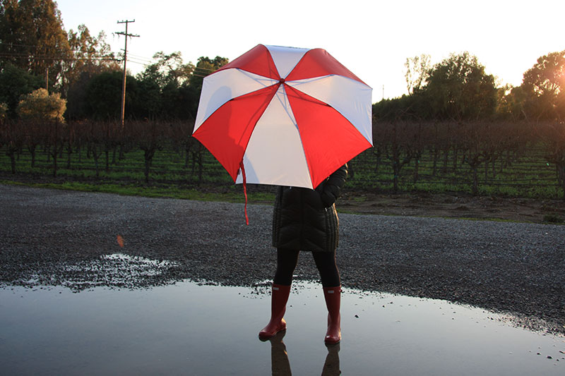 dalia-ceja-rainy-day-napa-valley-unbrella