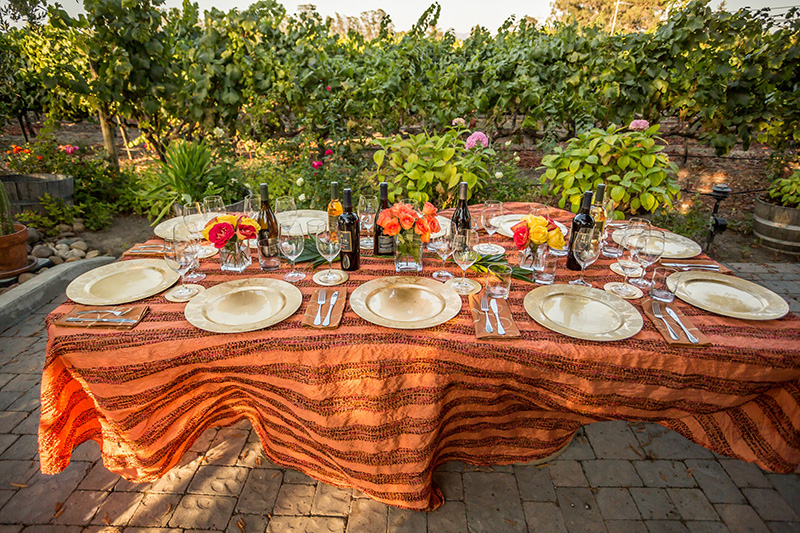 harvest-vineyard-table-setting-napa-valley-Eat-Drink-and-Be-Thankful