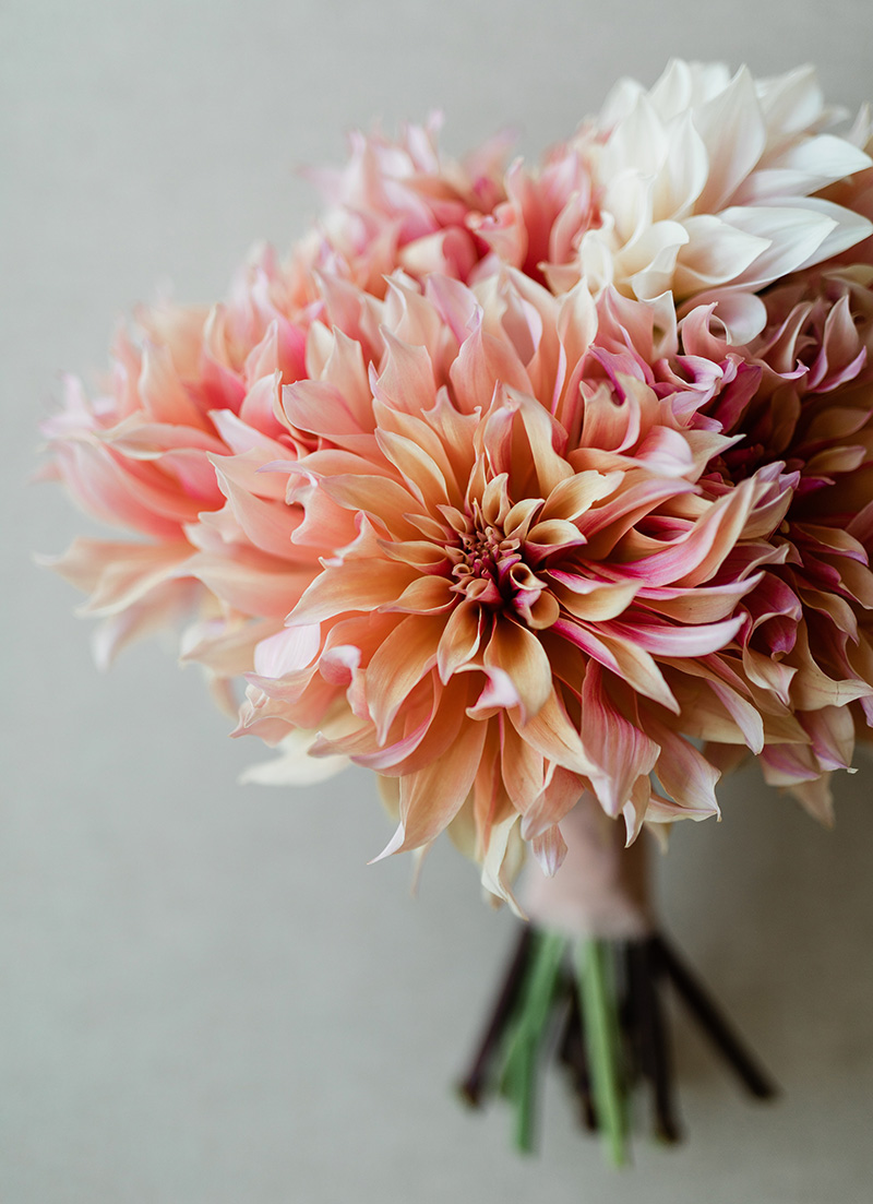 dahlia-bouquet-dalia-ceja-wedding.jpg