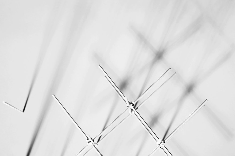 lauperzemp_grid_P9U9225.jpg