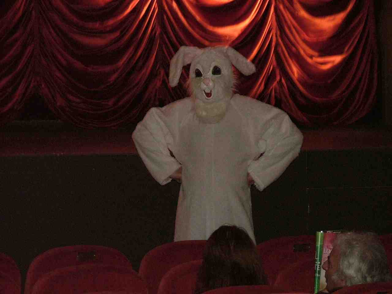 Did this rabbit steal the NLFF film?