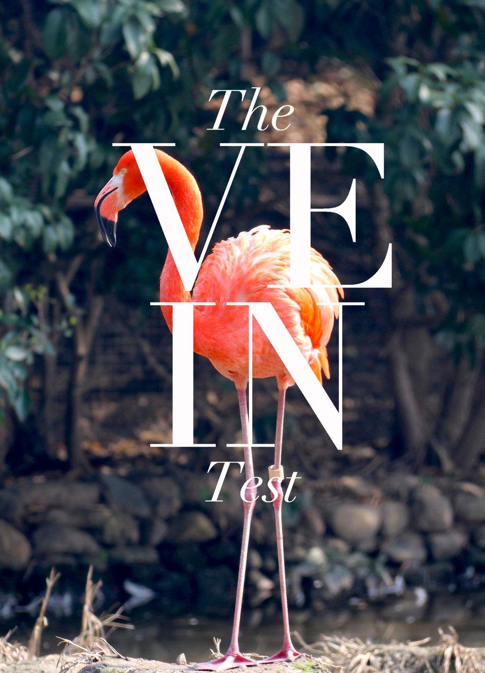 the veintest.jpg
