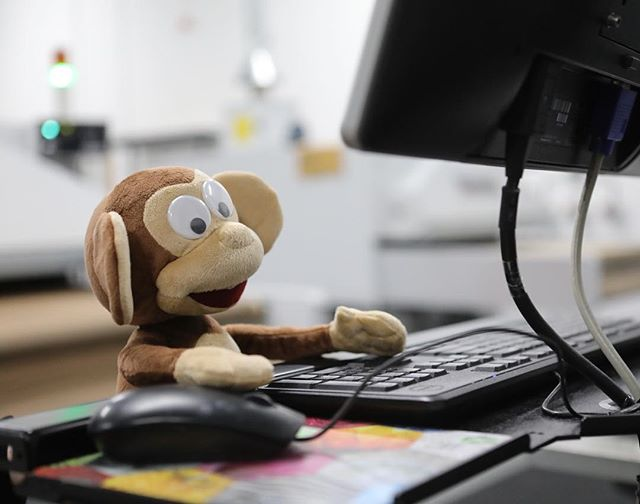 He has a name and is already hard at work printing on our AVKs! Meet Albert, named after the first monkey to go into space 🚀🐒 #albert #shirtmonkey #dtg #kornit #namethatmonkey
