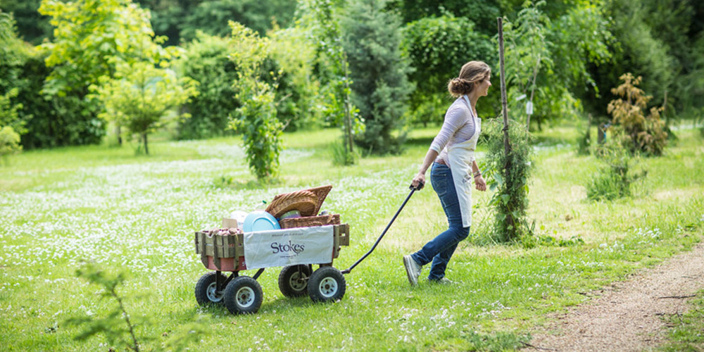 woman pulling the cart resized.jpg