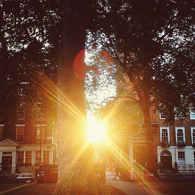 """REGRAM CoolBrand @hostbarnabas from a different Friday: Clouds come floating into my life, no longer to carry rain or usher storm, but to add colour to my sunset sky"""" Sitting in Soho Square watching the sun set between the buildings of our neighbours...the perfect Friday moment 🌇  #Sunset #London #Sohosquare #Soho #TheHouseofStBarnabas #HoSB #sun #light #moments #QOTD #rabindranathtagore . . . .. #thatsdarling #thehappynow #pursuepretty #makeyousmilestyle #flashesofdelight #petitejoys #livethelittlethings #nothingisordinary #finditliveit #thegoodlife #makeithappen #ontrend #whatstrending"""