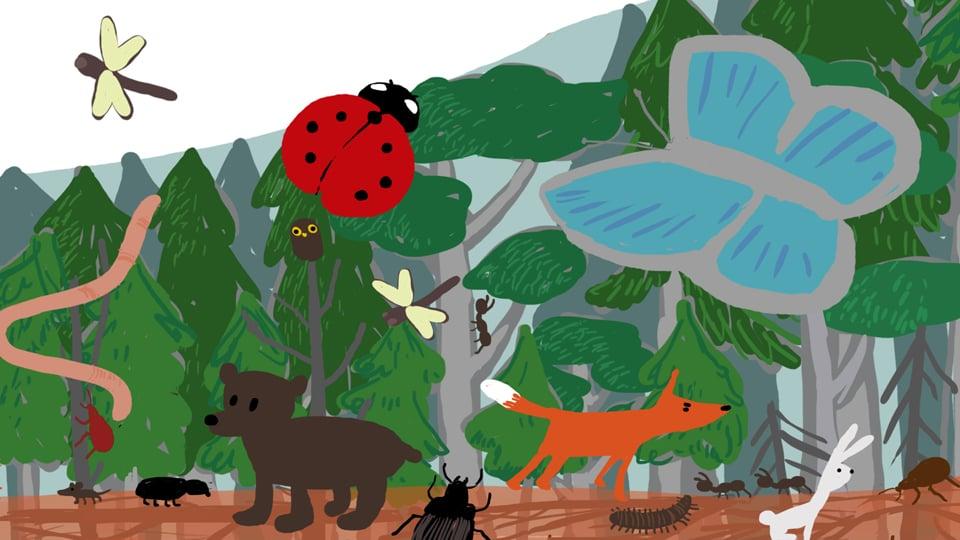 Biotop /NIBIO/Medvind Eventbyrå 2015 stillbillde fra animasjon i film