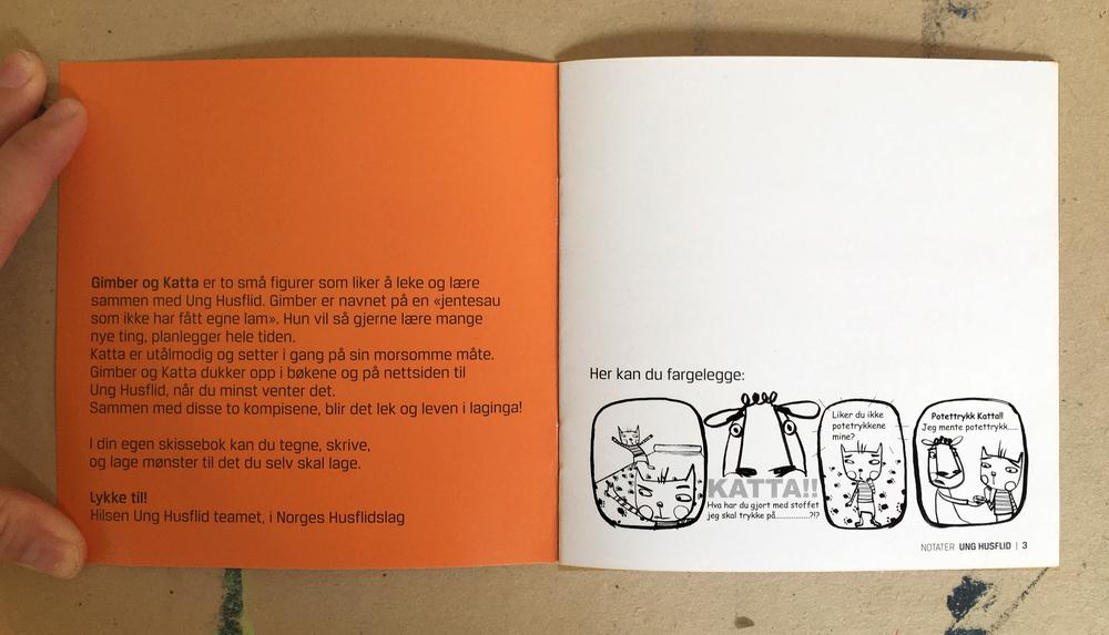 Skissebok  /UNg Husflid
