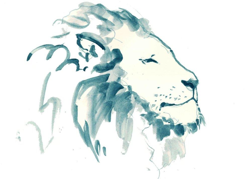 leeuw.jpg