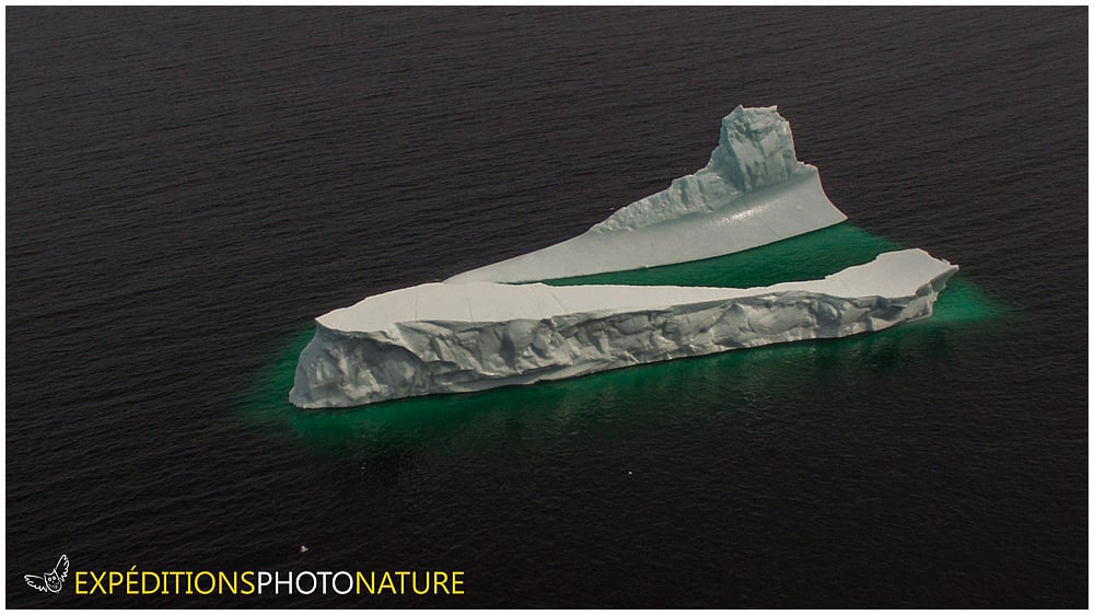 Iceberg, Fogo Island, NL (photo: Vincent Ethier, UAV Studios)