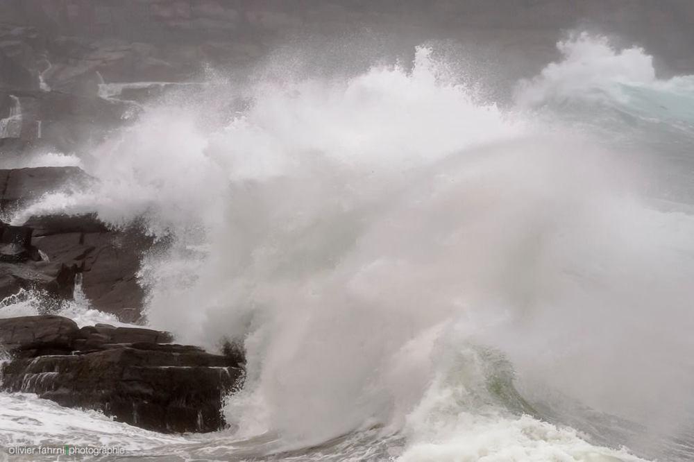 Cape Spear - Crédit photo: Olivier Fahrni, participant de l'atelier et chroniqueur