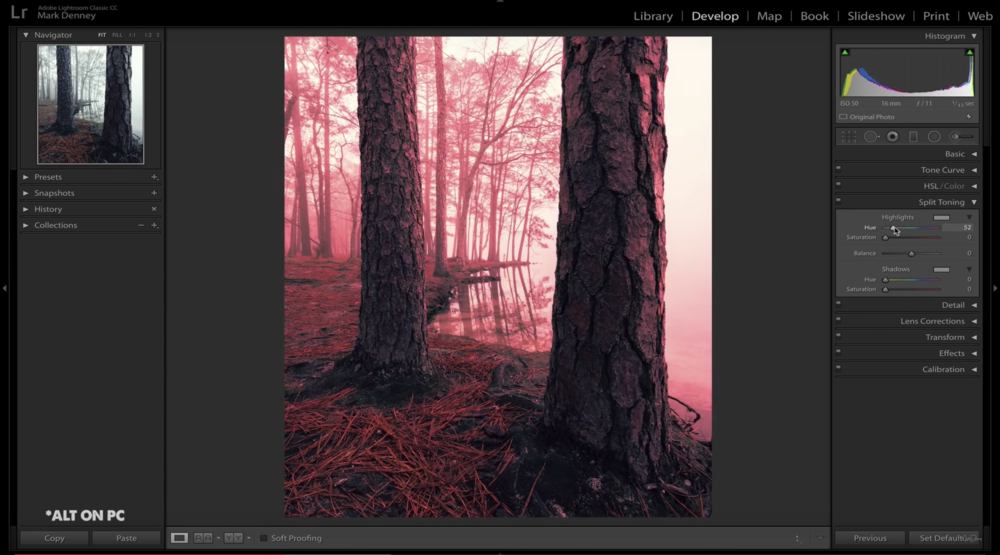 Find Your Creative Style with Split Toning Lightroom Tutorial 04