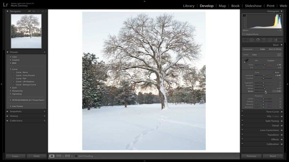 Lightroom Tips to Transform Your Winter Photos 04