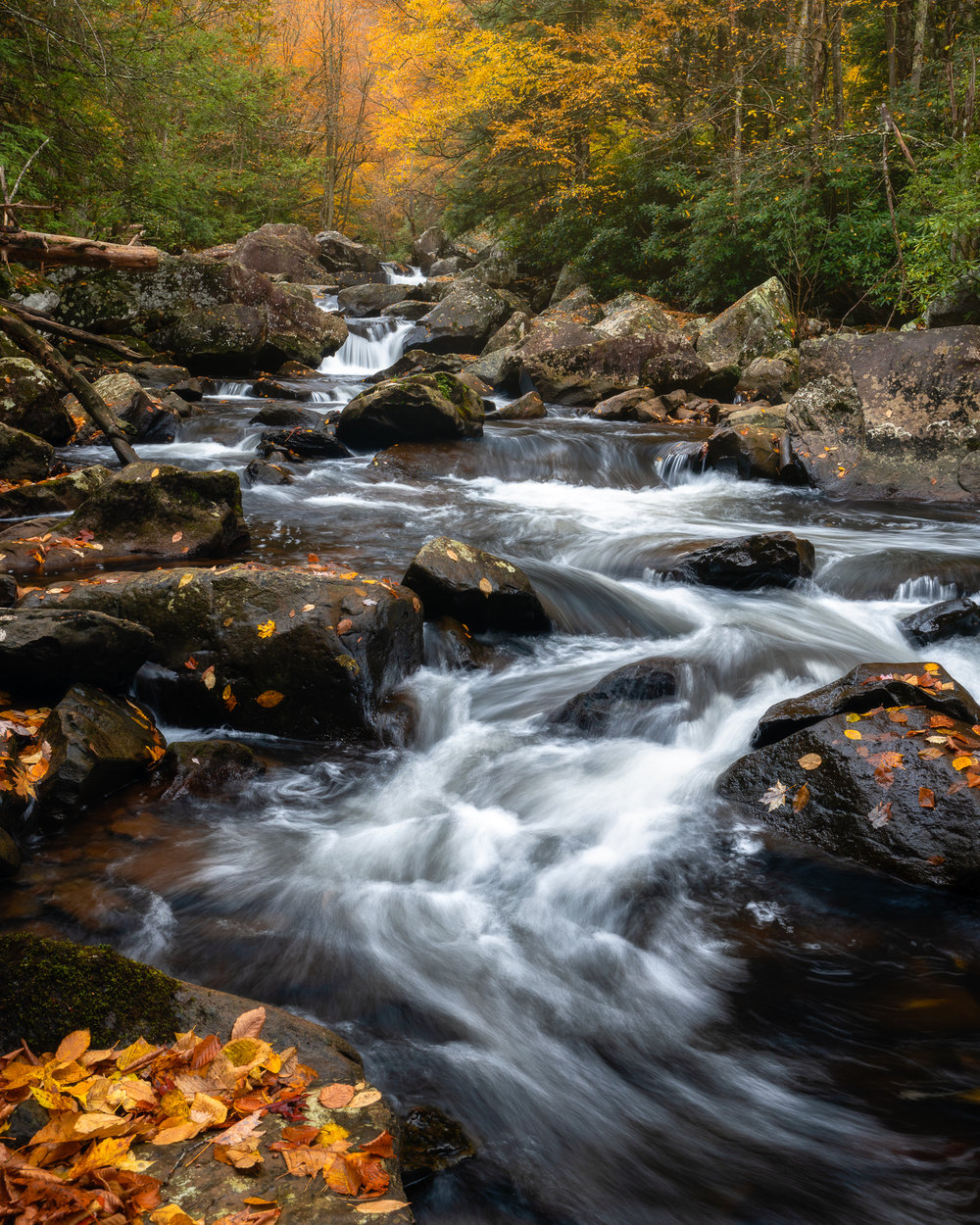 5 BEGINNER LANDSCAPE PHOTOGRAPHY MISTAKES TO AVOID 04