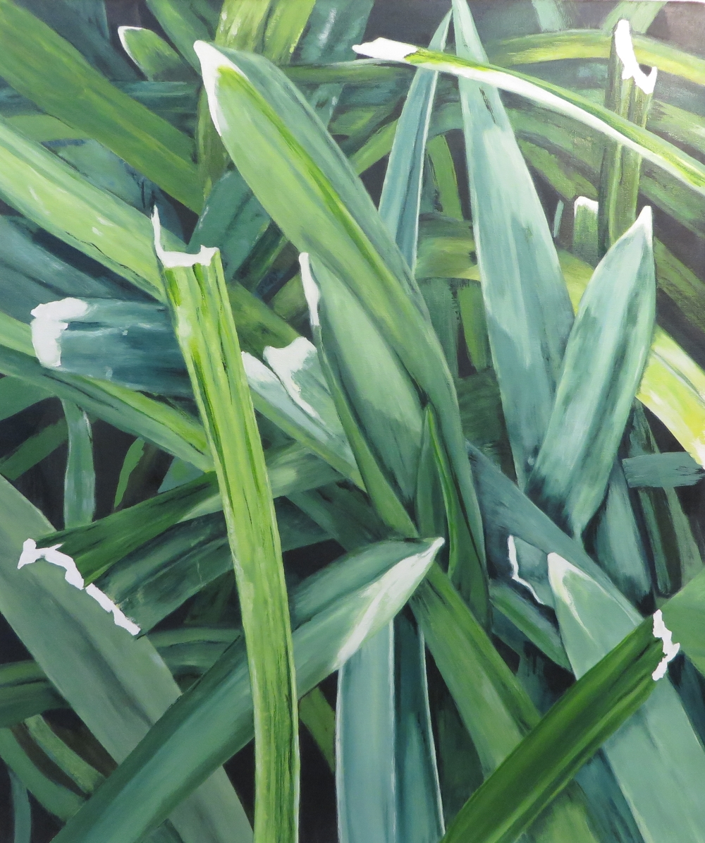 "Grass, 2014, oil on canvas, 44""x40"""