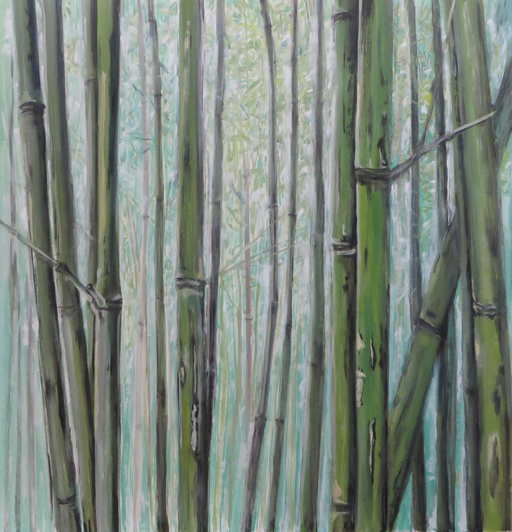 Bamboo, 2015
