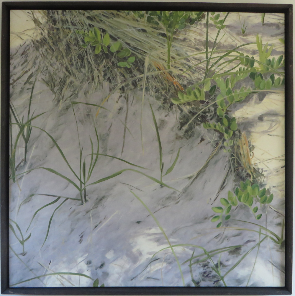 "Dunes, 2007, oil on canvas, 48""x48"", framed"