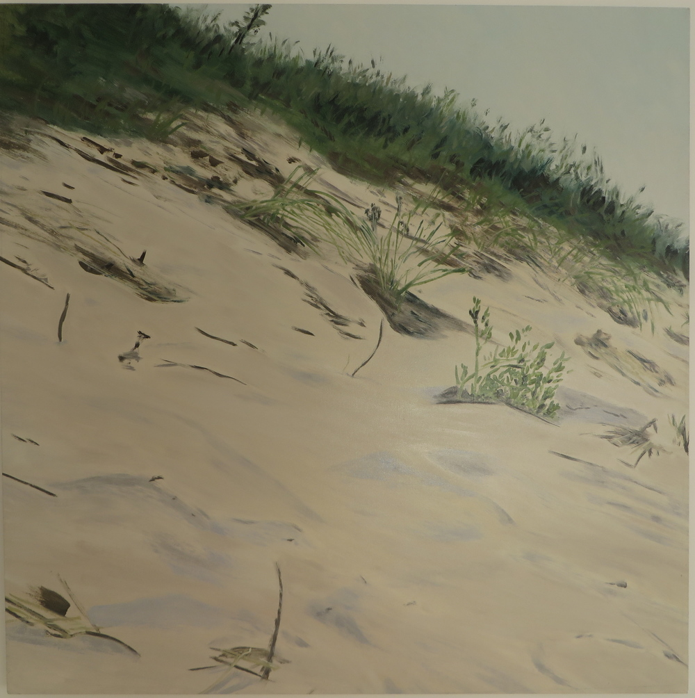 "Hillside Dunes, 2007, oil on dunes, 48""x48"""