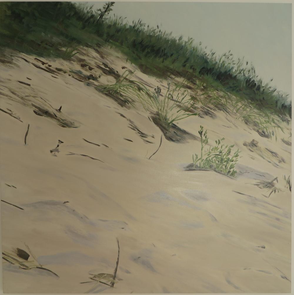 Dune Hills, 2007