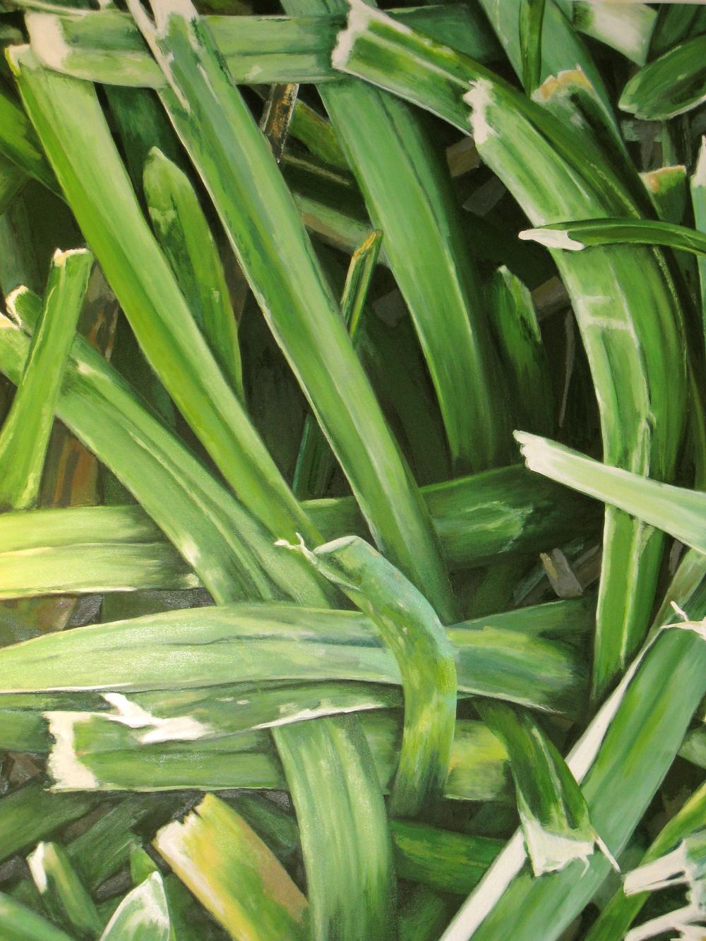 "Large Grass Closeup, 2010, oil on canvas, 86""x78"""