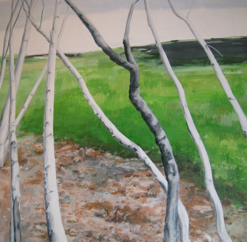 "Birch Trees in the Landscape, 2008, oil on canvas, 86""x86"""