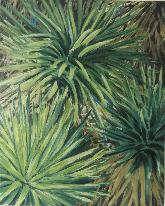 Joshua Tree Series, No. 1