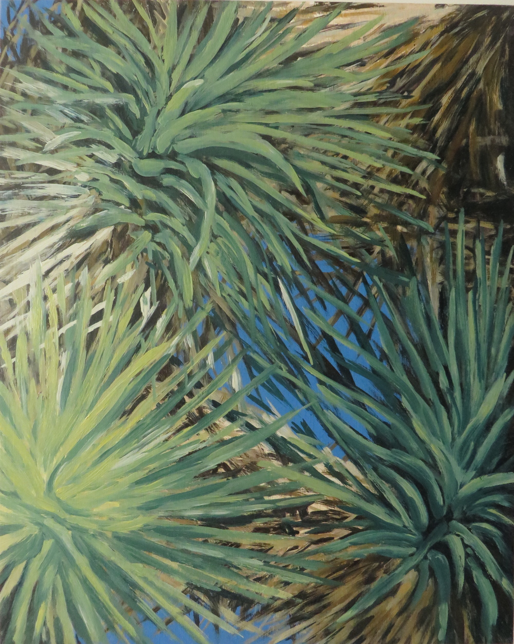 Joshua Tree Series No.2