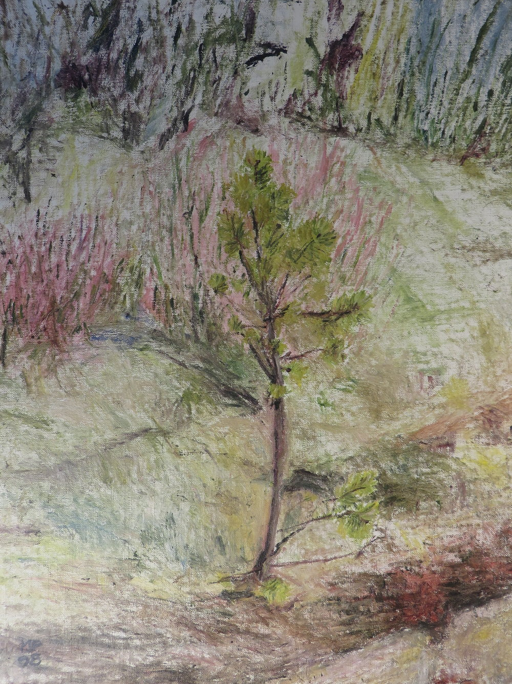 Little Tree, 1998