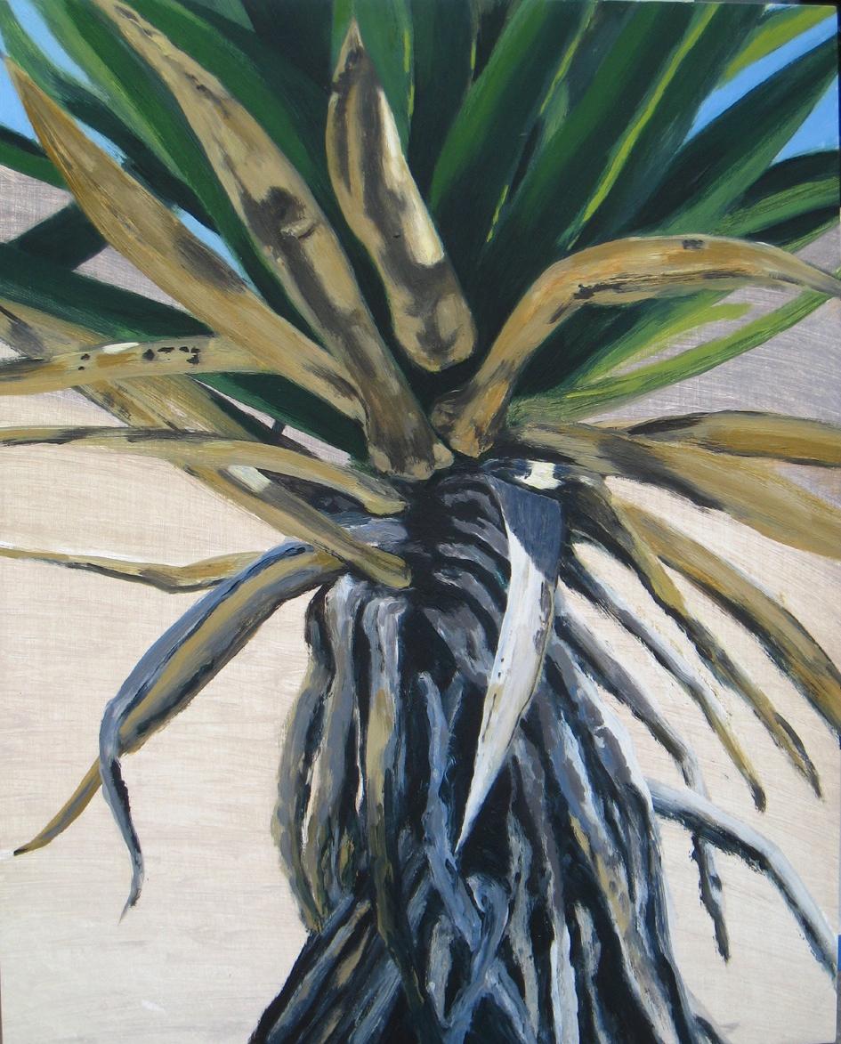Joshua Tree 1, 2008