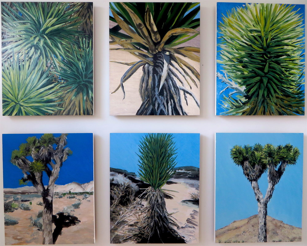 Joshua Tree, Group of Six, 2008
