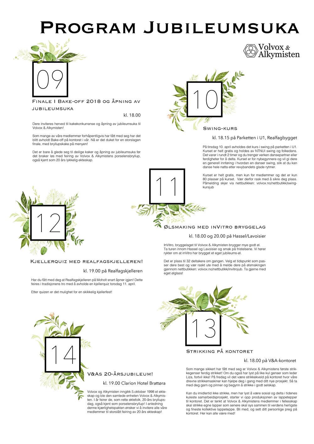 Program til jub20-2.jpg