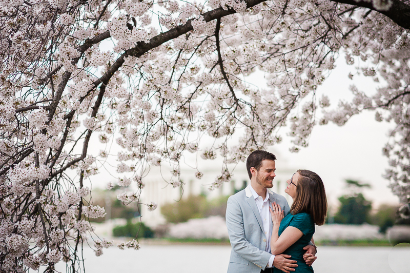 cherry_blossom-8.jpg