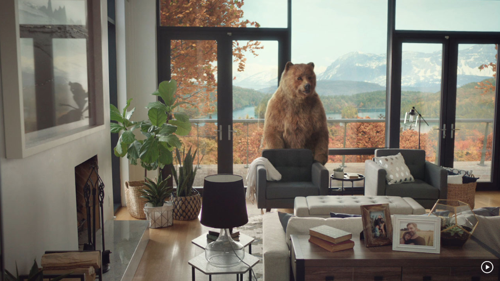 - CANVAS FURNITURE - THE BEARS