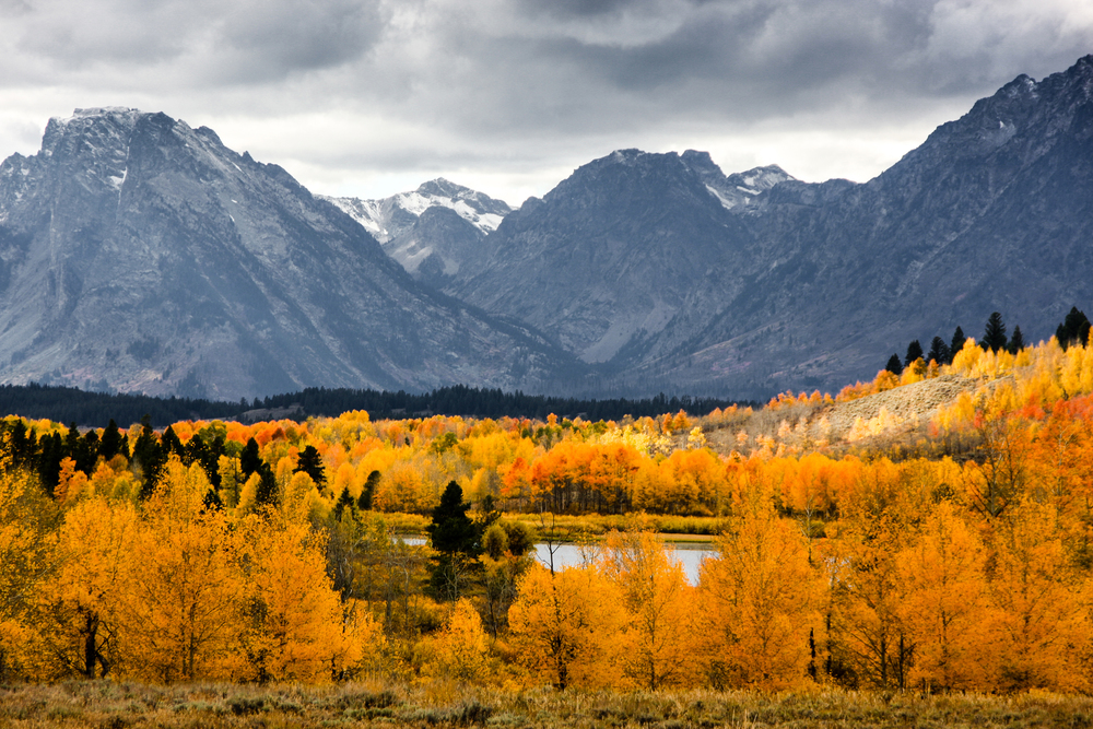 Grand Tetons and Fall