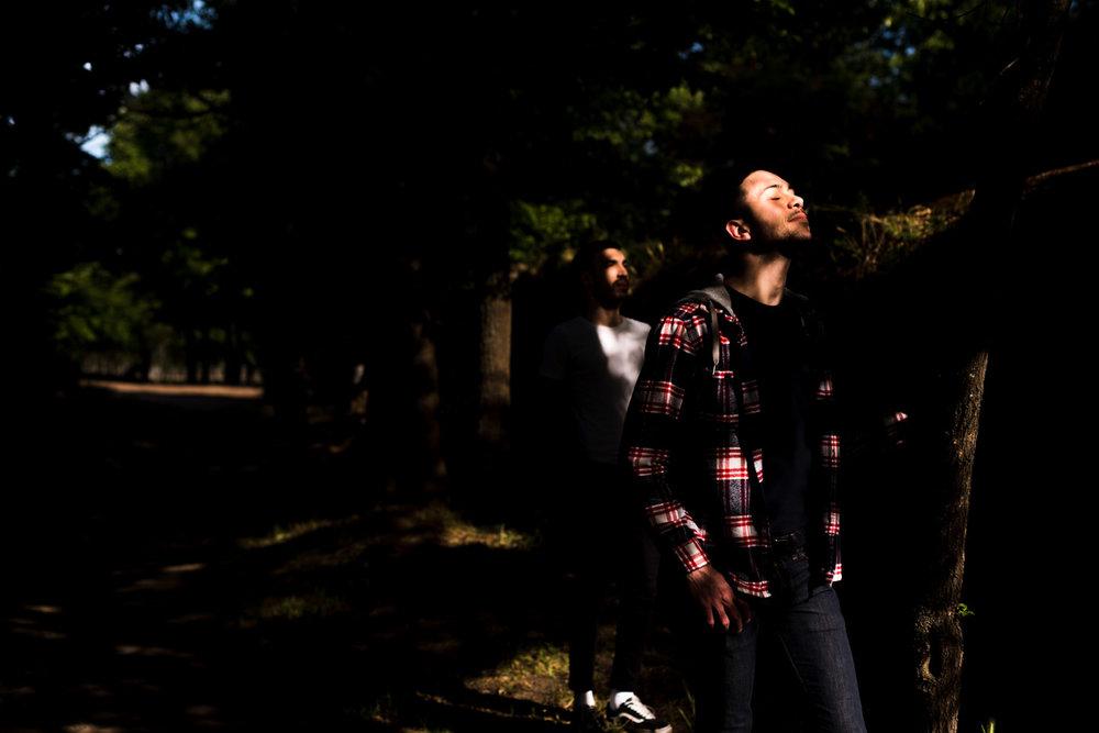 amore-luce-coppia-paarco-alberi-ombre