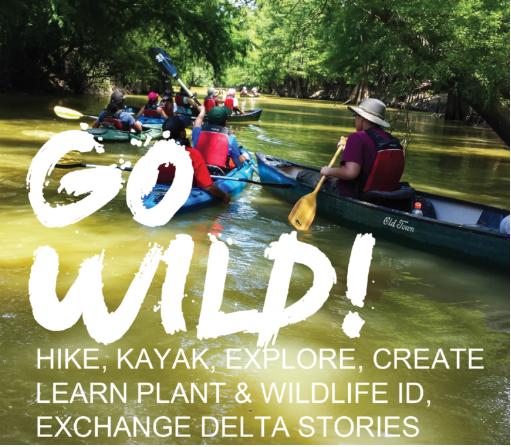 Artplace Mississippi: Delta Wild