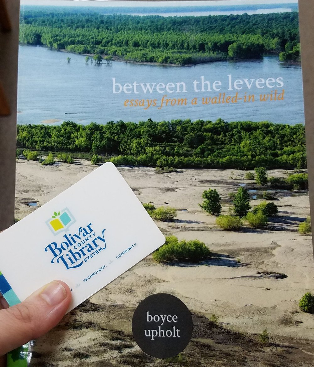 "Lower MS River Foundation: ""Between the Levees: Telling the Story of the Mississippi Batture"""