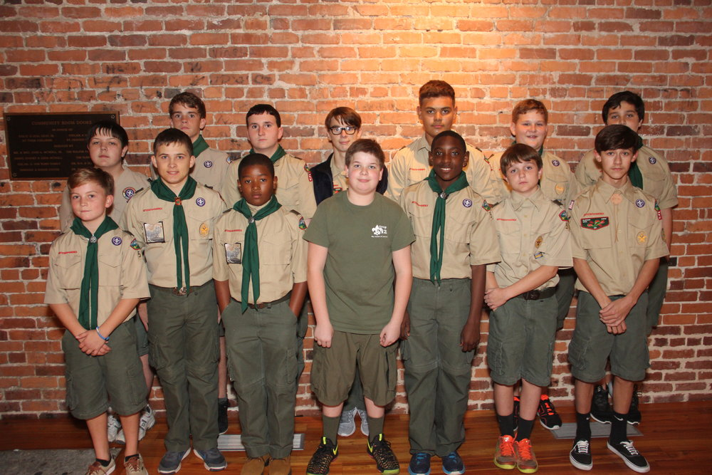 Boys Scouts at Vineland.JPG