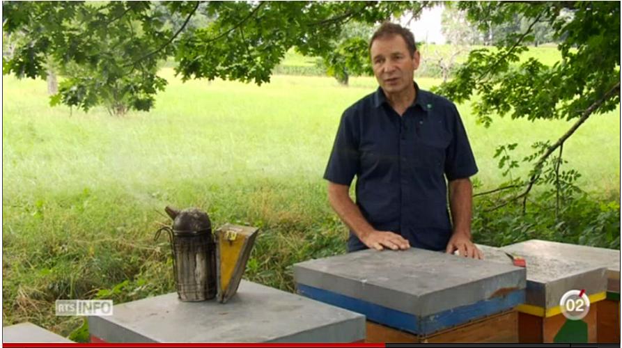 La production de miel est mauvaise - 12h45 RTS 30.08.16